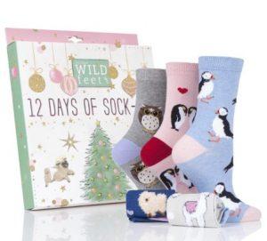 12 pairs of the sock calendar